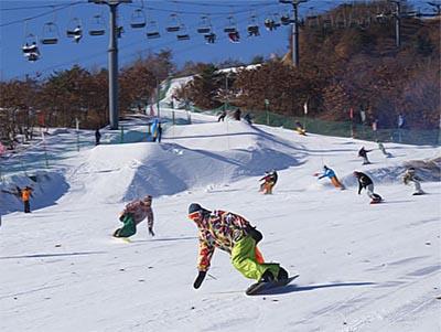 大连铭湖滑雪场;; 鑫程商务旅行社提供的安波滑雪场周六日滑雪3小时
