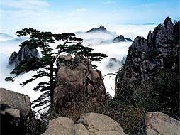 黄山,千岛湖奇山秀水、皖南徽派6日体验之旅