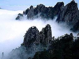 黄山、千岛湖、婺源杭州、绍兴、奉化溪口、普陀山、宁波、上海双卧十日游