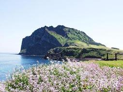 中华泰山号邮轮4晚5日精选岸上观光—济州、福冈-大连起止
