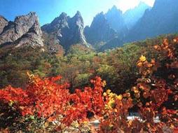 丹东鸭绿江、朝鲜新义州、平壤、开城、妙香山五日游