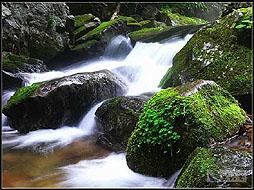 本溪水洞+蒲石河森林公园二日游(大连独立、0自费0购物)