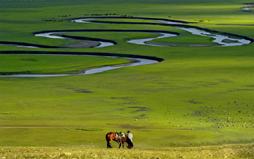 呼伦贝尔大草原、满洲里、呼伦湖、额尔古纳湿地纯玩双卧5日(丰富体验、特色美食)