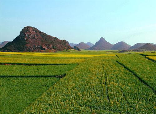 桂林、阳朔、兴坪渔村、银子岩、印象刘三姐、古东瀑布、龙脊梯田6日