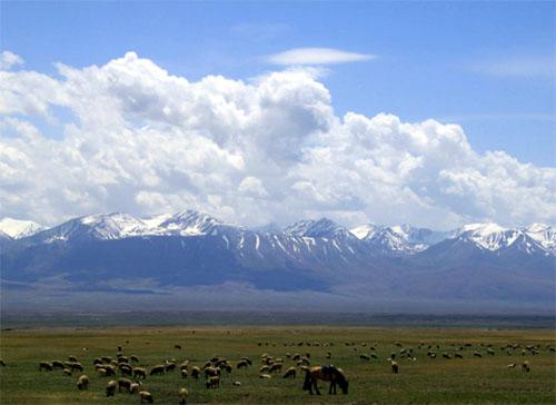 兰州、西宁、张掖、嘉峪关、敦煌、新疆9日(丝绸之路经典线路)