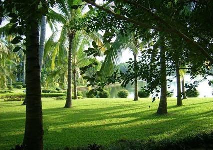 海南-兴隆热带植物园
