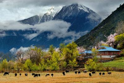 西藏双飞8日游(优选景点、一价全含)